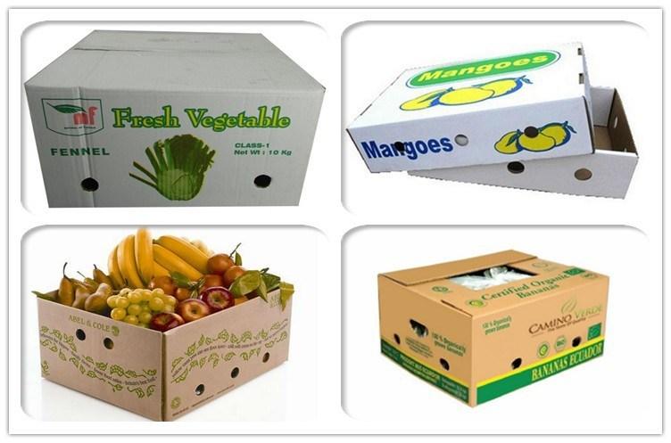 in thung giay carton in hop carton 2 - Tiêu chuẩn thùng giấy carton đóng hàng xuất khẩu